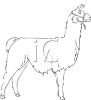picture of a llama in black and white in a vector clip art illustration clipart