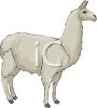 picture of a llama in a vector clip art illustration clipart