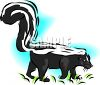 picture of a skunk walking through the grass in a vector clip art illustration clipart