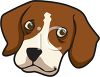 picture of the head of a beagle in a vector clip art illustration clipart