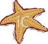 picture of a starfish in a vector clip art illustration clipart