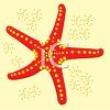 picture of a starfish in the sand in a vector clip art illustration clipart