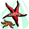 picture of two starfish underwater in a vector clip art illustration clipart