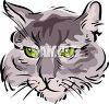 picture of a closeup a cat's face in a vector clip art illustration clipart