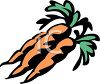 picture of a cartoon of fresh carrots in a vector clip art illustration clipart