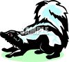 picture of a skunk with his tail in the air in a vector clip art illustration clipart