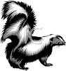 picture of  a cartoon skunk in a vector clip art illustration clipart