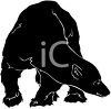 picture of a bear standing with his head down in a vector clip art illustration clipart