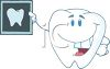 picture of a smiling tooth holding up a tooth xray in a vector clip art illustration clipart