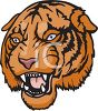 picture of a closeup of a tiger's face in a vector clip art illustration clipart
