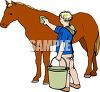 picture of a boy grooming his horse in a vector clip art illustration clipart