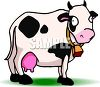 Picture of a cute cow with a bell around her neck standing in grass in a vector clip art illustration clipart