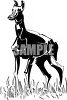 picture of a doberman pinscher standing in grass in a vector clip art illustration clipart