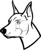 picture of the head of a doberman in black and white in a vector clip art illustration clipart