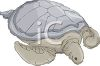 picture of a turtle in a vector clip art illustration clipart
