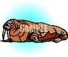 picture of a walrus laying down in a vector clip art illustration clipart