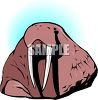 picture of a walrus in a vector clip art illustration clipart