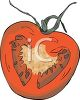 picture of half of a tomato in a vector clip art illustration clipart