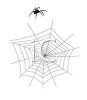 picture of a spider walking by it's web in a vector clip art illustration clipart