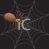picture of a black widow spider in its web on a black background in a vector clip art illustration clipart