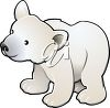 Picture of a young polar bear on a white background in a vector clip art illustration clipart