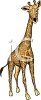 picture of a cartoon giraffe on a white background in a vector clip art illustration clipart