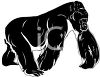 picture of a silhouette of a gorilla on a white background in a vector clip art illustration clipart