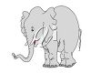 picture of a cute baby elephant in a vector clip art illustration clipart