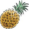 picture of a cartoon pineapple in a vector clip art illustration clipart