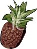 picture of a fresh pineapple in a vector clip art illustration clipart