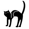 Picture of a black cat with an arched back with white eyes on a white background in a vector clip art illustration clipart