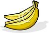 picture of three bright yellow bananas on a white background in a vector clip art illustration clipart