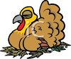 picture of a live turkey laying on leaves taking a nap in a vector clip art illustration clipart