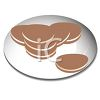 picture of chocolate cookies on a plate in a vector clip art illustration clipart