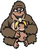 Picture of a young gorilla sitting down eating a banana in a vector clip art illustration clipart