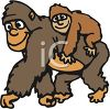 picture of a mother gorilla walking with her baby on her back in a vector clip art illustration clipart