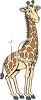 picture of a giraffe with big eyes in a vector clip art illustration clipart