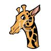 picture of a head of a giraffe in a vector clip art illustration clipart