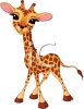 picture of a giraffe calf cartoon with a cute face in a vector clip art illustration clipart