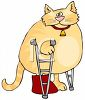 picture of a chubby cat with a broken leg standing on crutches in a vector clip art illustration clipart