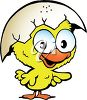 Easter Chick Cartoon clipart