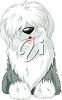 Old English Sheepdog clipart