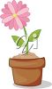 Pink Flower Growing in a Pot clipart