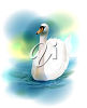 Realistic Image of a Swan Swimming on the Water clipart