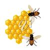 Bees and Honeycomb clipart