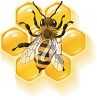 Bee and Honeycomb clipart