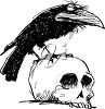 Cartoon Raven on a Skull clipart
