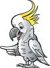 Cockatoo Pointing with it's Wing clipart