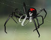 Black and Red Spider on a Web clipart