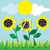 Sunflowers Growing in a Field clipart